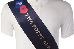 Deluxe Sashes