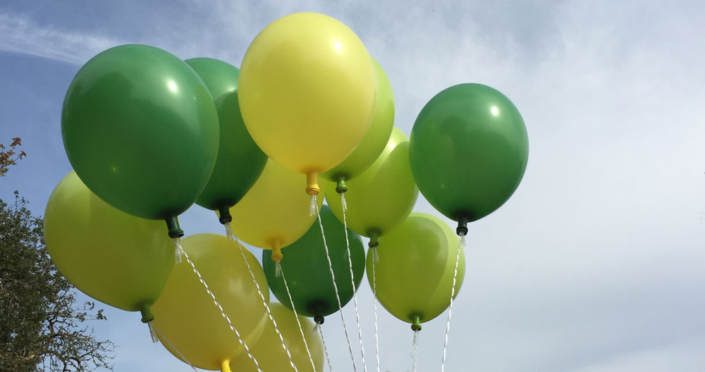 Helium Balloons fitted with the HSV™